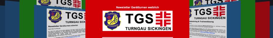 2013-NL-Banner